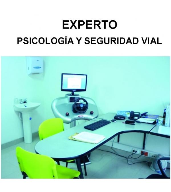 Experto en Psicología y Seguridad Vial (Online)