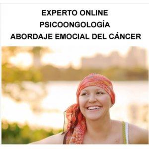 EXPERTO ONLINE:Psicooncología, abordaje emocional del cáncer Expte.350/14