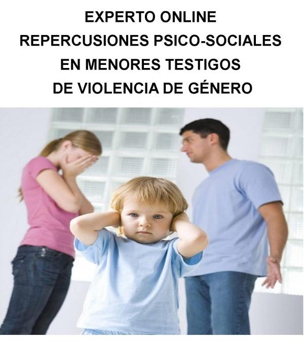 EXPERTO ONLINE: Repercusiones psico-sociales en menores testigos de violencia de género Expte.348/14