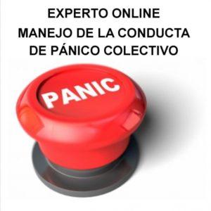 Experto en Manejo de la conducta de pánico colectivo Online Expte.341/14